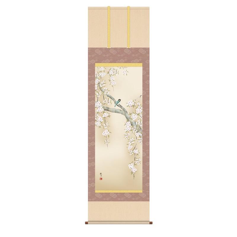 掛軸 [花鳥画]春掛け 【桜花に小鳥】 [尺五] [森山観月] [KZ2A2-085](代引き不可)