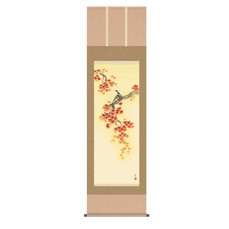 掛軸 [花鳥画] 【紅葉に小鳥】 浮田秋水 尺五 [H30A4-098]【代引き不可】