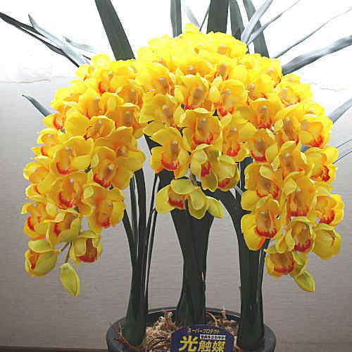 シンピジウム 黄色 3本立ち 光触媒【造花】本物そっくり 花 ギフト