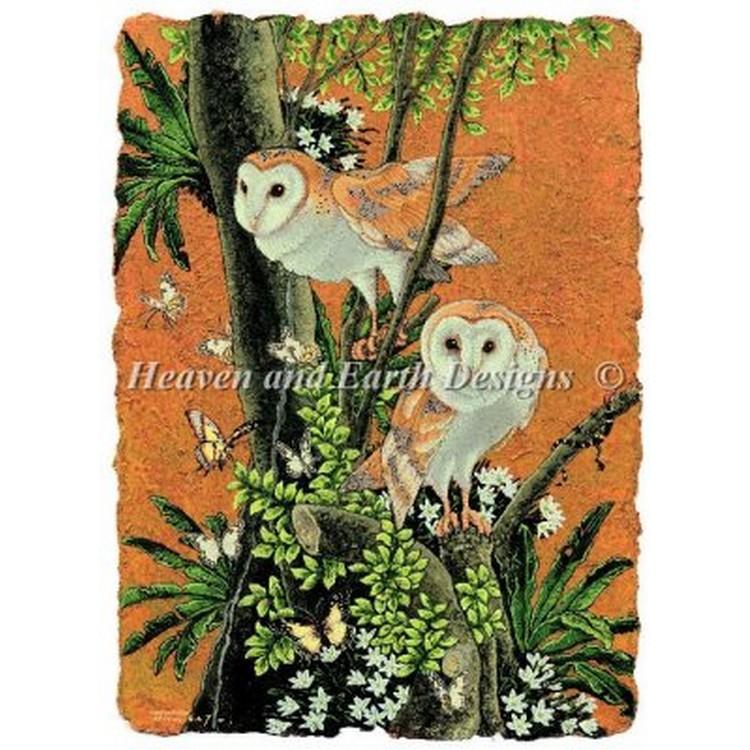 クロスステッチ キット 上級者 全面刺し Heaven And Earth Designs(HAED) - Selina Fenech - Barn Owl
