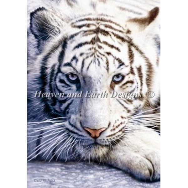 クロスステッチ キット 上級者 全面刺し HAED(Heaven And Earth Designs) - David Penfound - Mini White Tiger