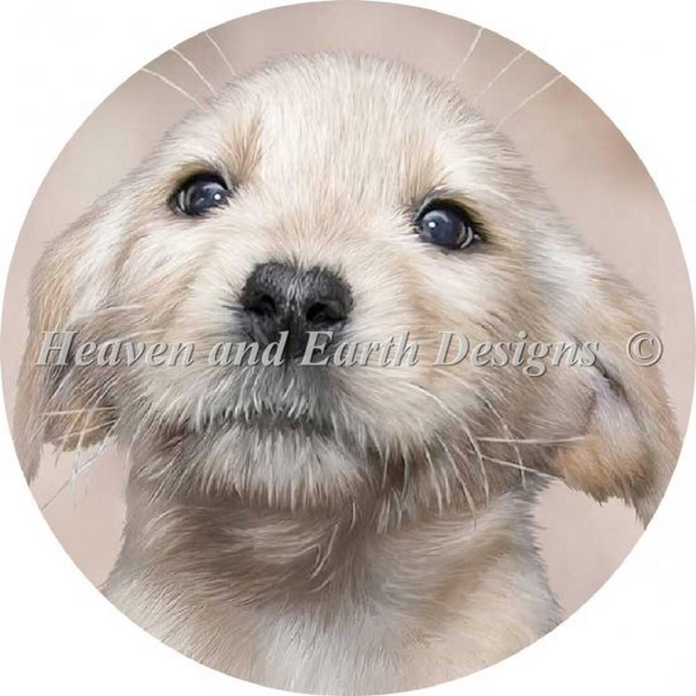 クロスステッチキット クロスステッチ刺繍キット 海外 Heaven And Earth Designs(HAED) - Ornament Yellow Lab Pup