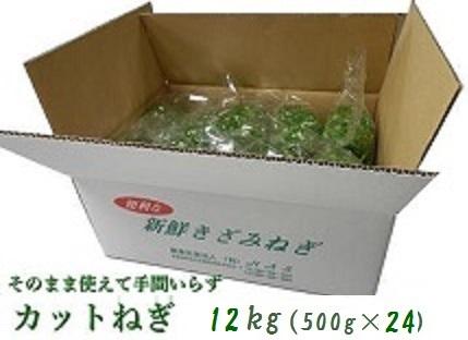 阿波の新鮮カットねぎ 12kg(500g×24)業務用
