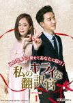 私のキライな翻訳官 DVD-BOX1 (本編640分)[OPSD-B655]【発売日】2018/1/24【DVD】