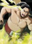 火ノ丸相撲 五 (本編94分+特典3分)[PCBG-53225]【発売日】2019/6/5【DVD】