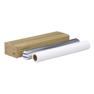 (業務用5セット) 富士フィルム(FUJI) 直接感熱紙 TB233/DIPWB594 A1 白/青 2本