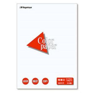 【スーパーSALE限定価格】(業務用100セット) Nagatoya カラーペーパー/コピー用紙 【B5/特厚口 50枚】 両面印刷対応 ホワイト(白)
