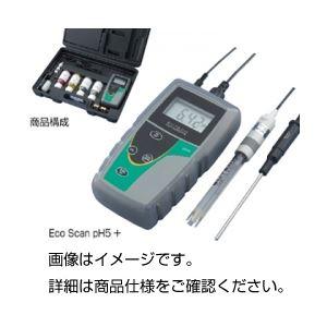 【スーパーSALE限定価格】pH計 Eco ScanpH5+