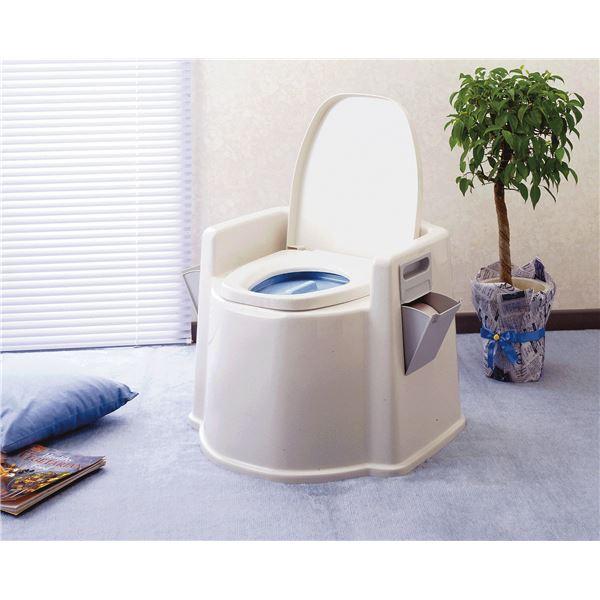 幸和製作所 樹脂製ポータブルトイレ テイコブポータブルトイレ DX PT02