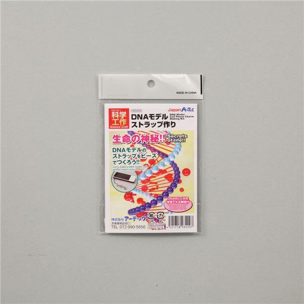 (まとめ)アーテック DNAストラップ作り 【×30セット】