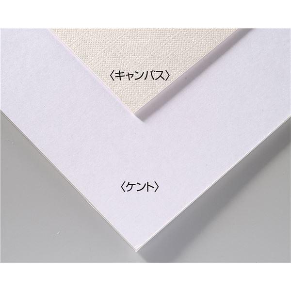 (まとめ)アーテック A&B オリジナル 両面アートボード/イラストボード 【B3】 ECO素材 キャンバス 【×30セット】