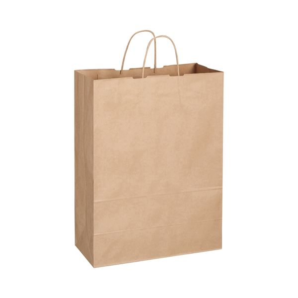 (まとめ) TANOSEE 紙手提袋 丸紐 特大 ヨコ360×タテ480×マチ幅170mm 茶 1パック(50枚) 【×5セット】