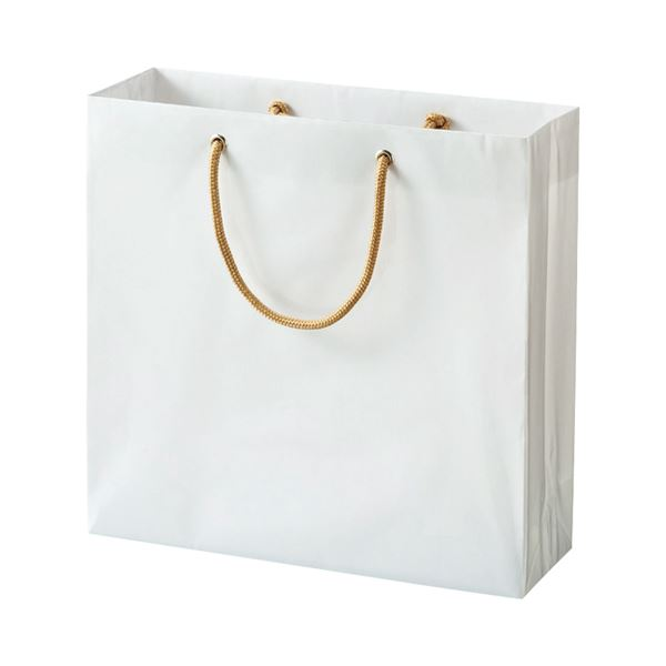 (まとめ) TANOSEE ビニールカバー付手提げ袋 S ヨコ330×タテ320×マチ幅110mm 白無地 1パック(10枚) 【×5セット】
