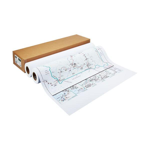 TANOSEE カラー用マットコート紙841mm×40m 1箱(2本)