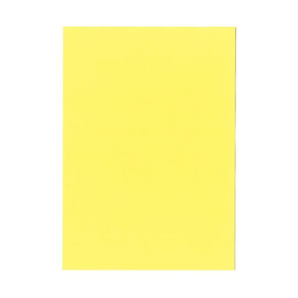 (まとめ) 北越コーポレーション 紀州の色上質A4T目 薄口 やまぶき 1冊(500枚) 【×5セット】