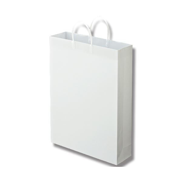(まとめ) TANOSEE ラミネートバッグ 特大 ヨコ380×タテ510×マチ幅110mm 白 1パック(10枚) 【×5セット】