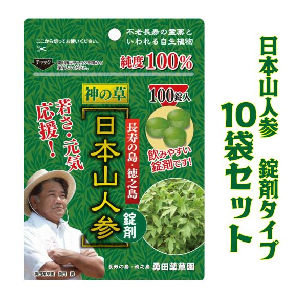 日本山人参 錠剤 10袋セット ヒュウガトウキ 健康 サプリ エイジングケア 美容 ダイエット