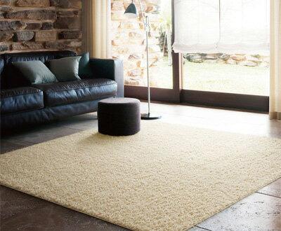 【送料無料】シャギーラグ▼スミトロンプレシャス 261×261cm▼スミノエ  ビッグサイズラグ BIG SIZE RUG イージーオーダーラグ すみのえ 絨毯 じゅうたん カーペット