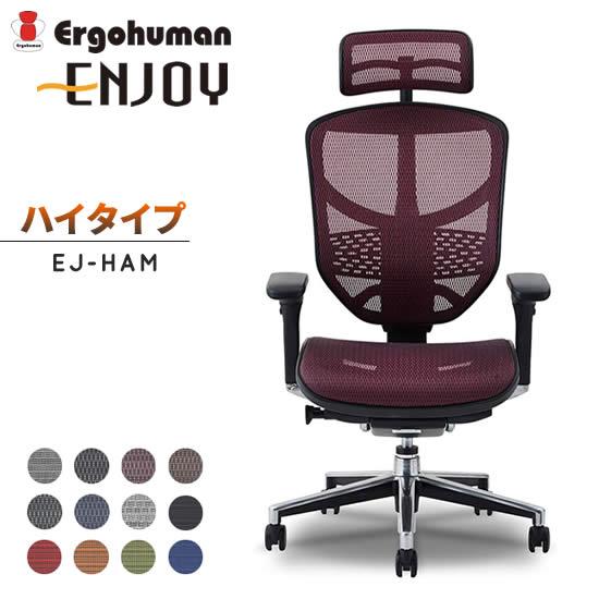 【送料無料】 エルゴヒューマン エンジョイ ハイタイプ EJ-HAM パソコンチェア オフィスチェア メッシュチェア 昇降 高機能 リクライニング