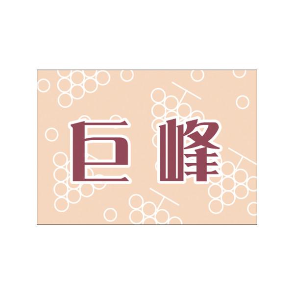 【取寄商品】フロアーマット「巨峰」(玄関マット)
