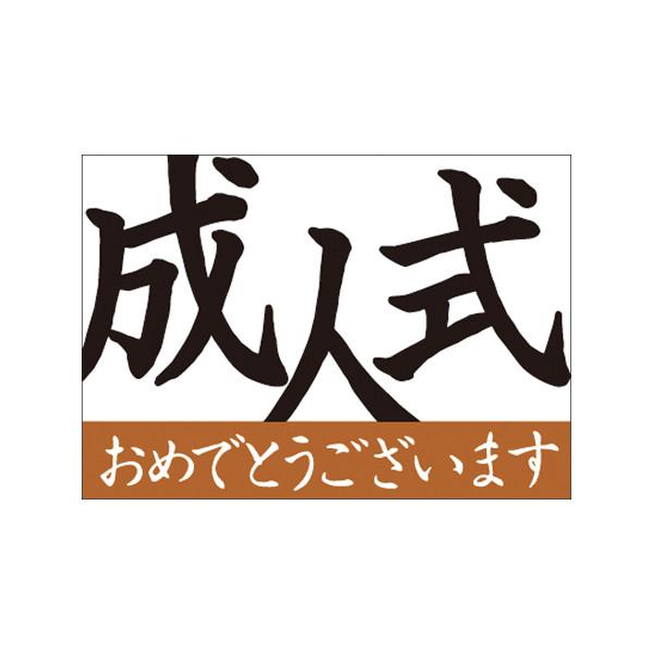 【取寄商品】フロアーマット「成人式」(玄関マット)