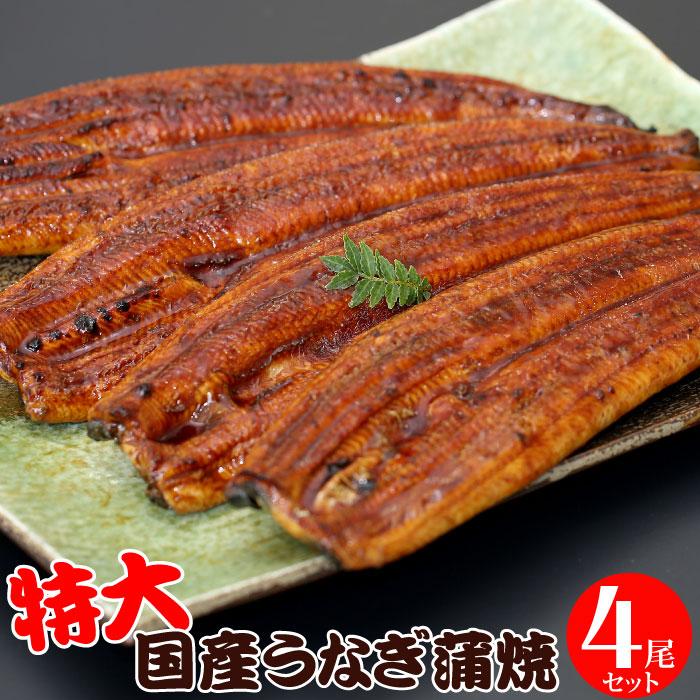 特大うなぎ蒲焼 200g~220g×4尾セット(8~12人前) うなぎ 国産うなぎ 鰻 蒲焼き