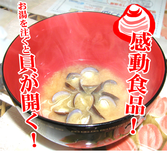 Miso Soup of freshwater clam(Shijimi)(set of 24)