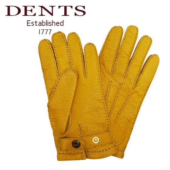 dents デンツ ペッカリー 手袋 メンズ レザー グローブ 革 防寒 15-1564 CORK ギフト・のし可