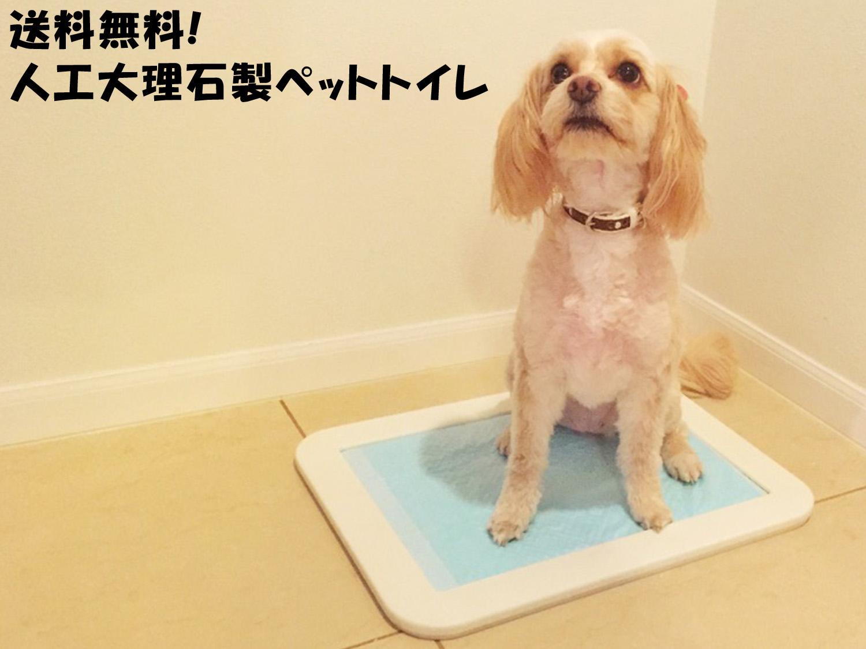 【セール商品】人工大理石製プレミアムペットトイレ