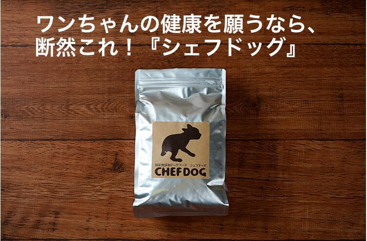 国産 無添加 シェフドッグ パピー 6.2kg ドッグフード【CFD】送料無料