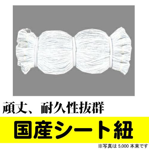 国産 シート紐 80cm ホワイト(5,000本入) PE結束紐850D 白色 頑丈、耐久性抜群 足場 仮設 防音シート  建築 シートひも 送料無料【Z】