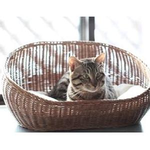 【PET】【株式会社シンシアジャパン】ラタンオーバルベッド【ブラウン】 JAN:4560310560831【W】