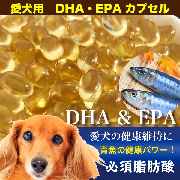 犬 DHA EPA サプリ 健康 老犬 肥満 オメガ3 青魚 血液 安心の定価販売 骨 必須脂肪酸 Z サプリメント メール便送料無料 アレルギー 2020モデル 65g カプセル 血液サラサラ 約100粒程度 魚油 ペット用