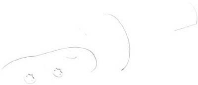 ワルタージャパン ボールノーズカッター F2339.Z40.032.Z02.43 [A071727]