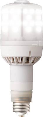 画像は代表画像です ご購入時は商品説明等ご確認ください 岩崎電気 個人宅不可 LEDioc LEDライトバルブF 今ダケ送料無料 E39口金形 E010204 昼白色 LDS79N-G-E39FA 79W 大好評です