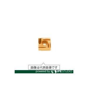【◆◇マラソン!ポイント2倍!◇◆】タンガロイ 旋削用G級ネガTACチップ COAT GH110(10個入) SNGG090308R-P [A080115]