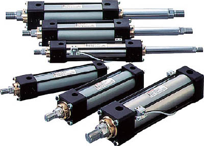TAIYO 油圧シリンダ 100H-2R1CB80BB300-ABAH2 [A092321]