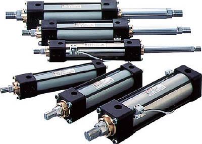TAIYO 油圧シリンダ 100H-2R1EB80BB400-ABAH2 [A092321]