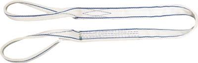 東レ インターナショナル シライ ポリエステルスリング 両端アイ形 幅75mm 長さ8.0m PET3E-75X8.0 [A020124]