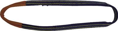 東レ インターナショナル シライ シグナルスリング SG4N エンドレス形 幅200mm 長さ2.5m SG4N-200X2.50 [A020124]