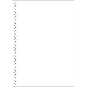 ヒサゴ A4白紙 30穴 2500枚入り [32706] BPE2049 [F040112]