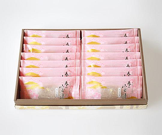 【金沢・森八】春の宝達14個入 ギフト 北陸 石川 金沢名産品 金沢銘菓 お取り寄せ 和菓子