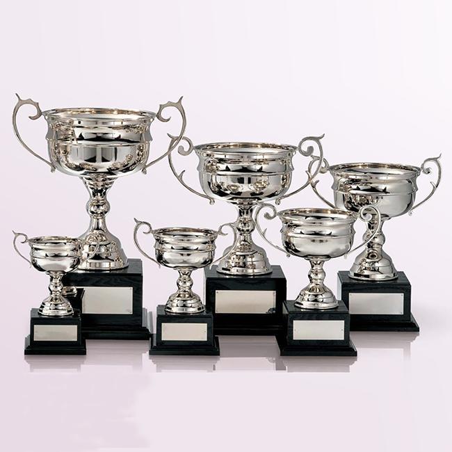 優勝カップ:真鍮製シルバーカップ(高さ270x口径147mm)C1142-D【文字彫刻無料】【送料無料】【木製ケース入り】[FP/H-4S]