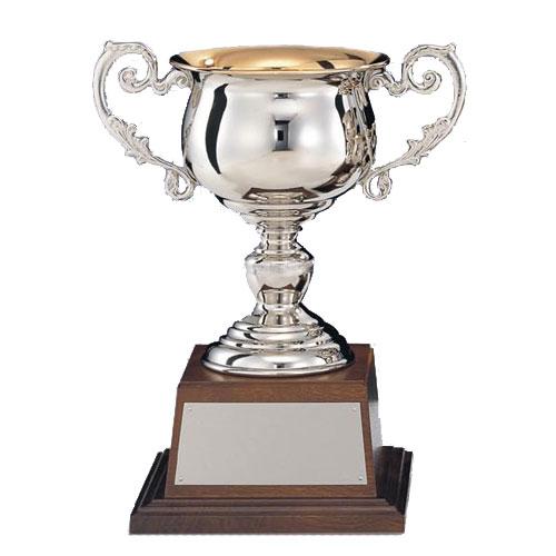 優勝カップ:真鍮製シルバーカップ(高さ230x口径110mm)C1127-D【文字彫刻無料】【送料無料】[FP/M-9S]