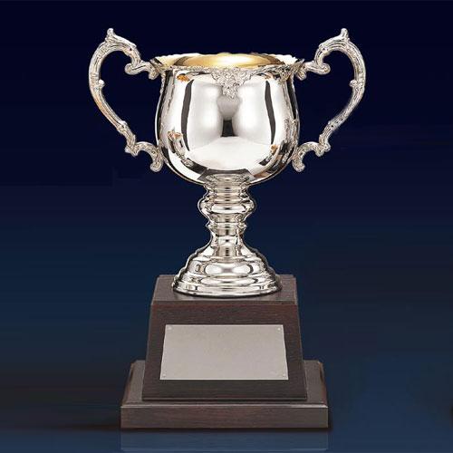 優勝カップ:持ち回りカップ(高さ230x口径90mm)DC1310-D【文字彫刻無料】【送料無料】[FP/M-9S]