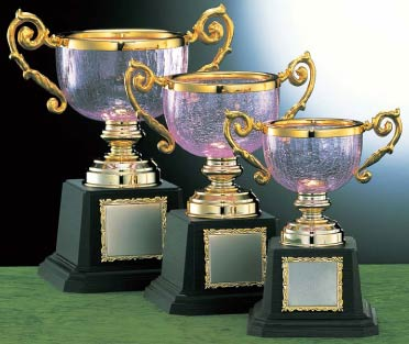 優勝カップ:ガラス製カップ(高さ195x口径95mm)VC1008C【文字彫刻無料】【送料無料】[M/K12]