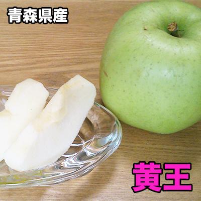 りんご 訳あり 10Kg 2020新作 2021年 収穫 青森 今ダケ送料無料 黄王 送料無料 わけあり 青りんご 青森県産 収穫分 10kg