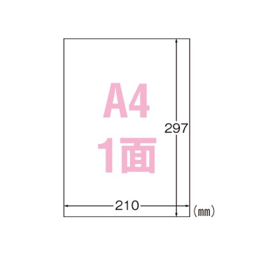 エーワン 屋外でも使えるラベル レーザー 市販 ツヤ消しフィルム 31036 10シート A4 透明 新作多数