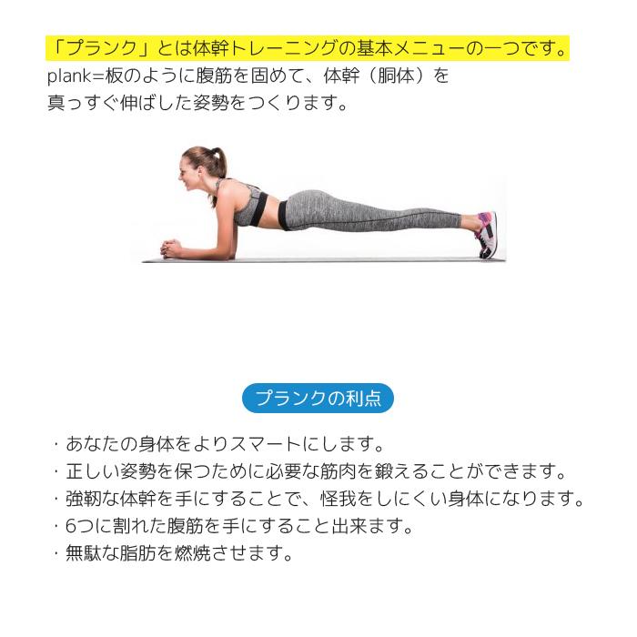 プランク 腰 が 痛い プランクというトレーニングをした直後、腰が痛くなるのはやり方やフ....