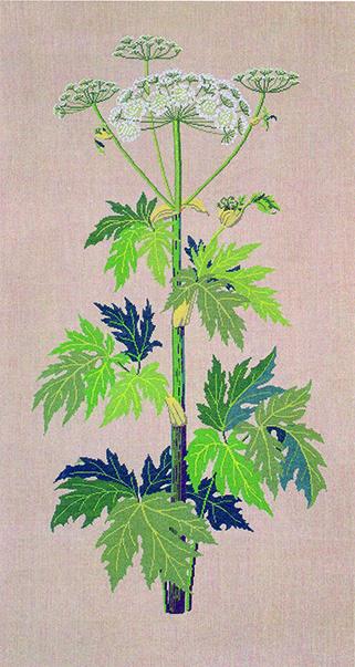 フレメ クロスステッチ 刺繍キット 【HOGWEED(ハナウド)】 野の花 デンマーク 輸入ししゅうキット
